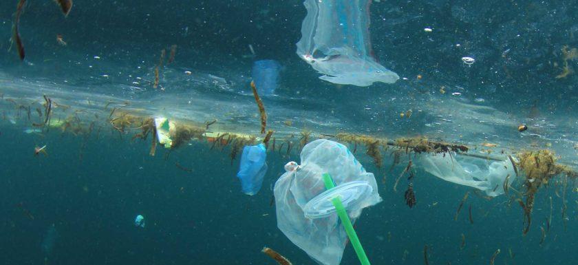 plastic debris is choking the ocean